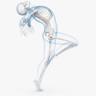 3D model Male Body with Skeleton Ballet Pose