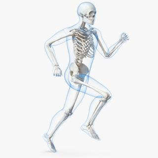 3D Male Body with Skeleton Running Pose