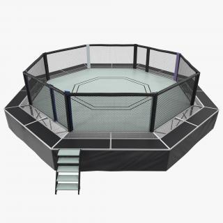 Fighting Octagon Arena 3D