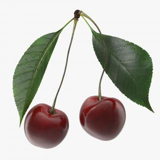 Cherry Collection 3D