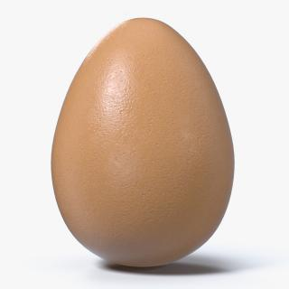 3D model Animal Egg