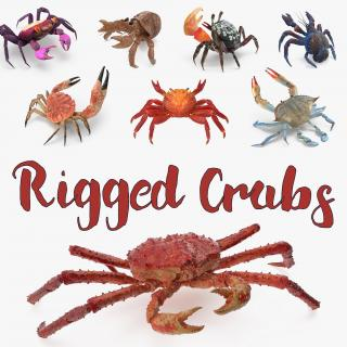 3D model Rigged Crabs Collection 3