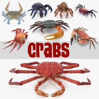 3D Crabs Collection 3 model