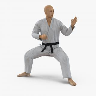 3D model Japanese Karate Fighter Rigged