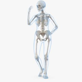 Female Body with Skeleton Rigged 3D