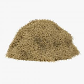 3D model Hay Pile