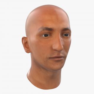 3D Mediterranean Male Head model