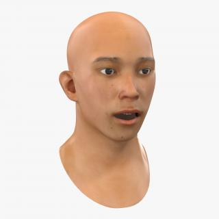 Asian Male Head Rigged 3D