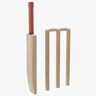 3D Cricket Collection model