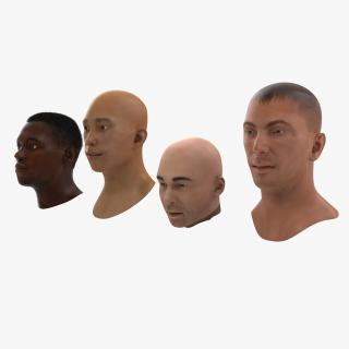 3D Male Rigged Heads Collection model