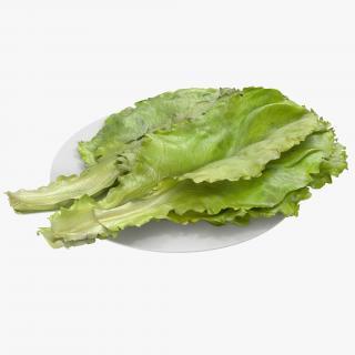 Lettuce Leaf Pile 3D