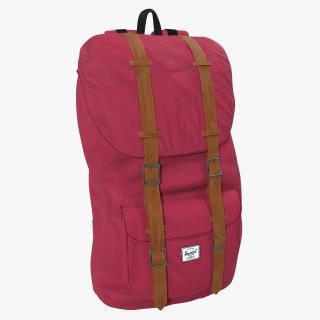 Backpack 8 Vinous 3D