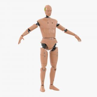 3D Male Crash Test Dummy