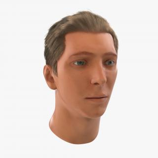 3D Male Head Rigged 2 model