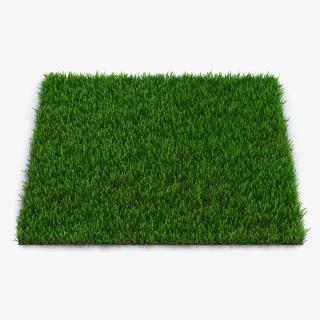 Zoysia Grass 3D
