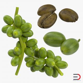 3D Green Coffee Collection model