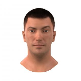 3D Male Head with Hair Rigged