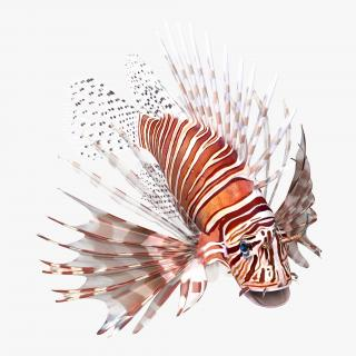 3D model Lionfish Rigged
