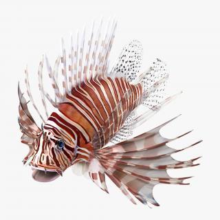 3D model Lionfish