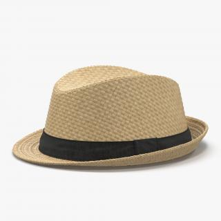 Mens Straw Hat 3D model