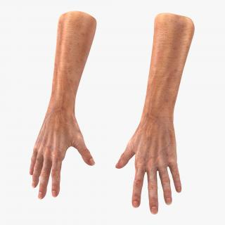 3D model Old Man Hands 2