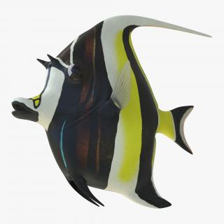 Moorish Idol Fish 3D
