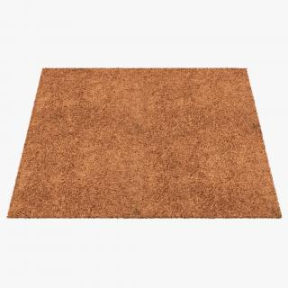 Carpet Beige 3D