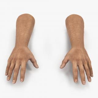 3D Man Hands with Fur model