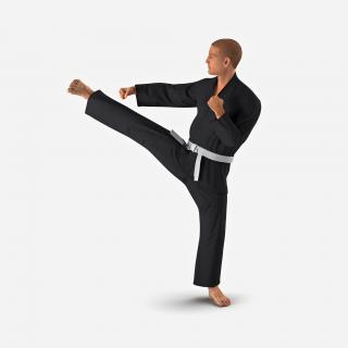 3D Karate Fighter Pose 2 Black Suit with Fur