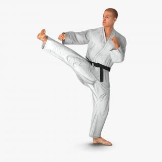 3D model Karate Fighter Pose 2 with Fur