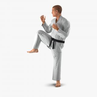 3D model Karate Fighter Pose 3 with Fur