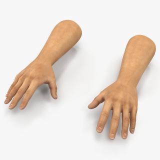 3D Man Hands 2