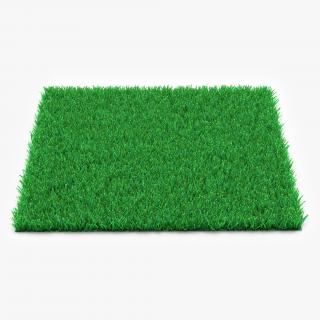Kentucky Bluegrass Grass 3D model
