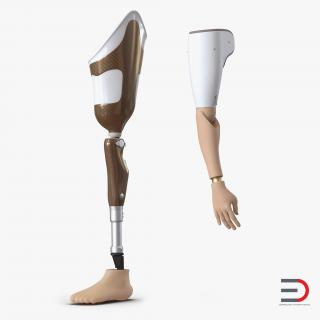 3D Prosthetic Leg and Arm Collection model