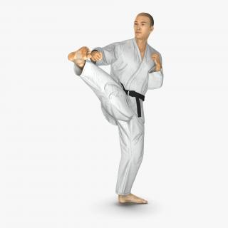 Japanese Karate Fighter Pose 2 with Fur 3D model