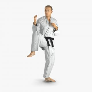 Japanese Karate Fighter Pose 3 with Fur 3D model