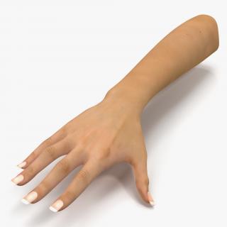 3D Female Hand