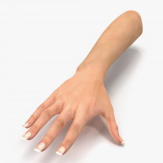 3D Female Hand 2 model
