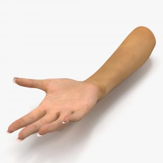 3D Female Hand Rigged model