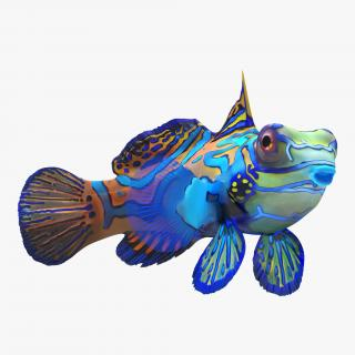 Mandarinfish Rigged 3D model