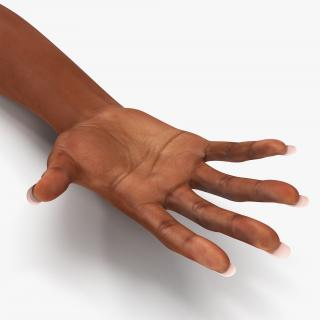 3D model Female Hand African American Rigged