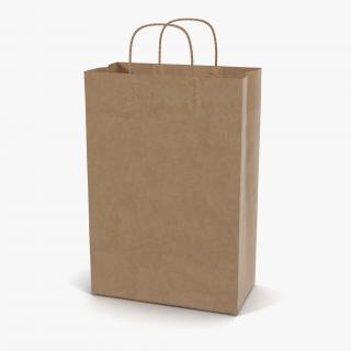 3D Paper Bag With Handle