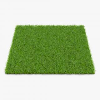 Fescue Grass 3D