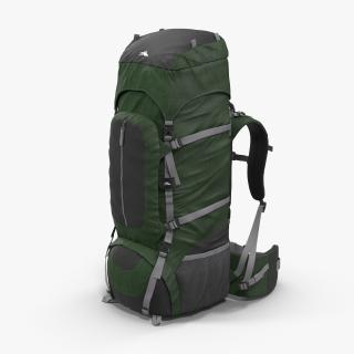 3D Large Camping Backpack Green model