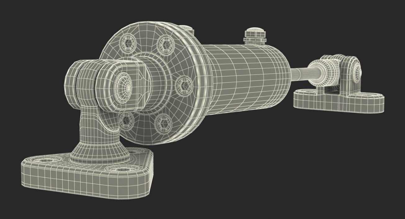 Anodized Hydraulic Cylinder 2 3D model