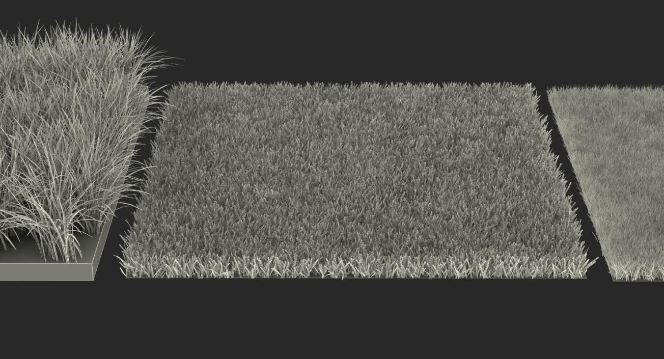 3D model Grass Fields Collection 2