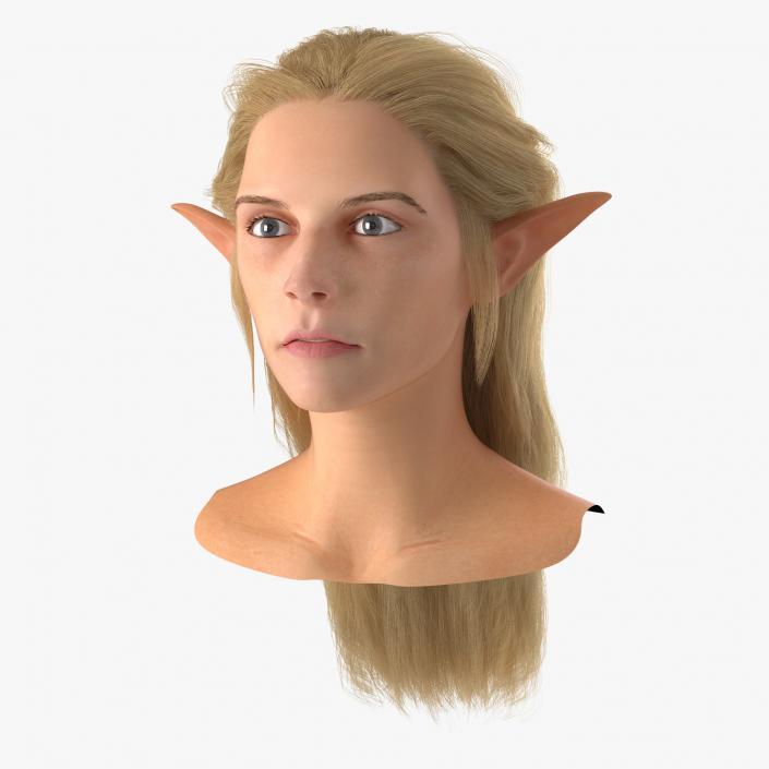 3D model Female Elf Head with Hair