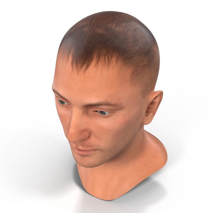 3D Caucasian Male Head Rigged