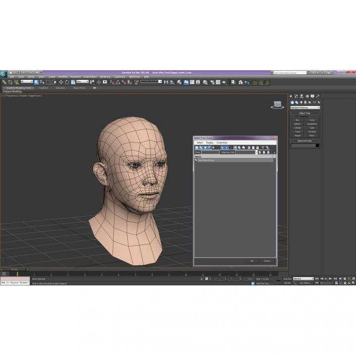 3D model Asian Male Head