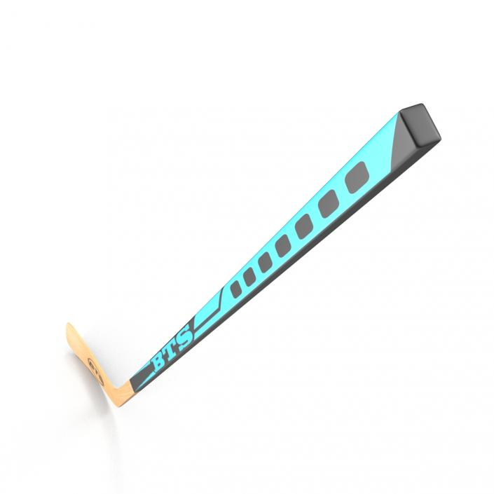 Hockey Stick 3D